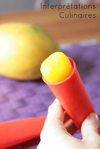 sorbet mangue 2